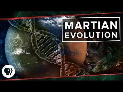 Martian Evolution   Space Time