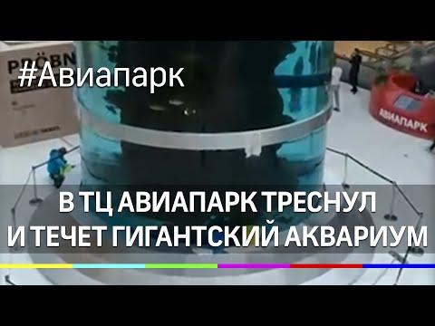 В ТЦ Авиапарк треснул и течет гигантский аквариум