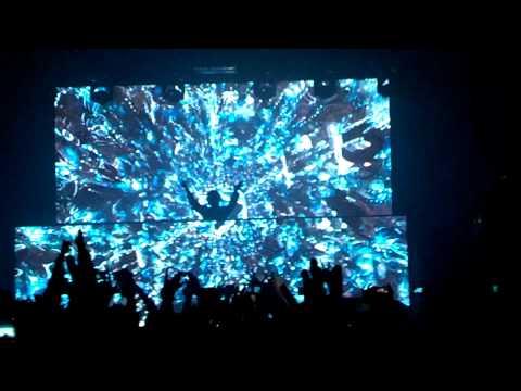 Zedd - Alive (Live)