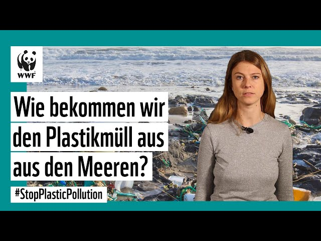 Wie bekommen wir den Plastikmüll aus den Meeren?