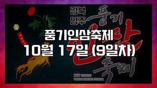 #2020 #온라인 #경북영주 #풍기인삼축제 온라인 스…