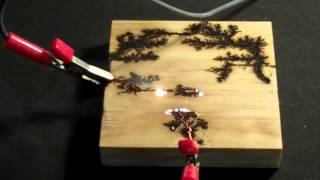 Etched Lightning - wood burning fractals (Lichtenberg figures) using high voltage electricity