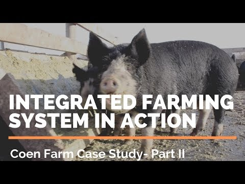 Integrated Farming System - Organic Farming & Permaculture - Coen Farm In Action
