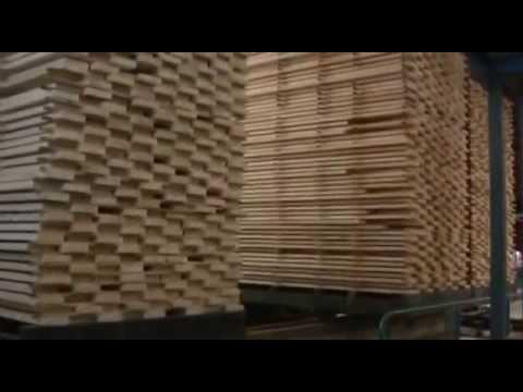 Завод ЛИК в Пестово - Современное производство обрезных и строганых пиломатериалов