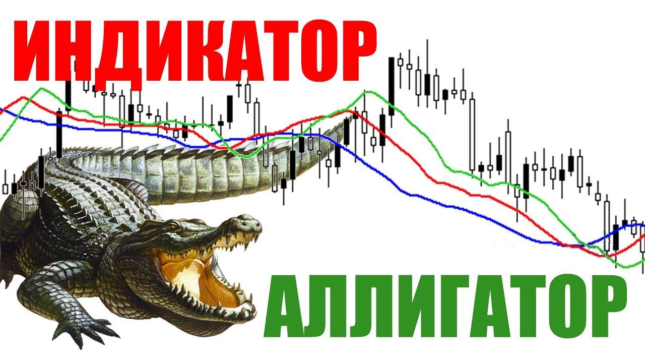 Aligator на forex код монитора котировок форекса