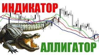 Секреты индикатора Alligator на форекс