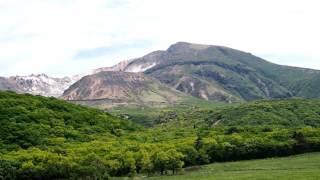 2017 05 21 2大分県九重町・タデ原湿原のハルリンドウ、サワオグルマ