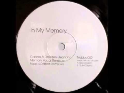 {Vinyl} Tiesto - In My Memory (Gabriel & Dresden Elephant Memory Vocal Remix)