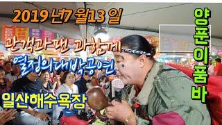 품바양푼이 (4k영상) 일산해수욕장 2019년7월13일