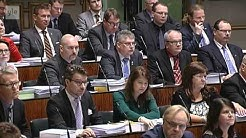 Eduskunta äänesti sukupuolineutraalin avioliittolain puolesta