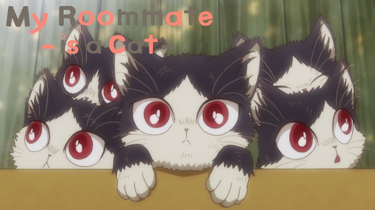 Haru S Story My Roommate Is A Cat Youtube