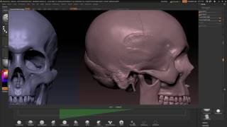 ZBrushCore - Paul Gaboury - Part 1 Importing Reference Images