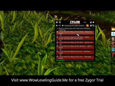 Achievement guide and Profession leveling guide in WoW