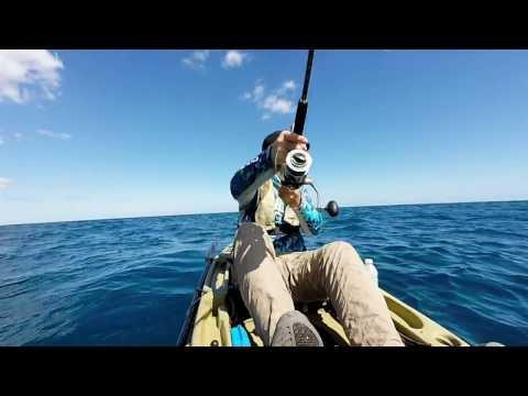 Offshore Kayak Fishing for Black Fin Tuna