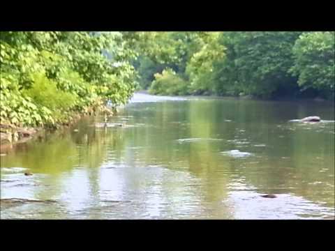 Flat Water Sippers - Jeff Wilkins Fly Fishing