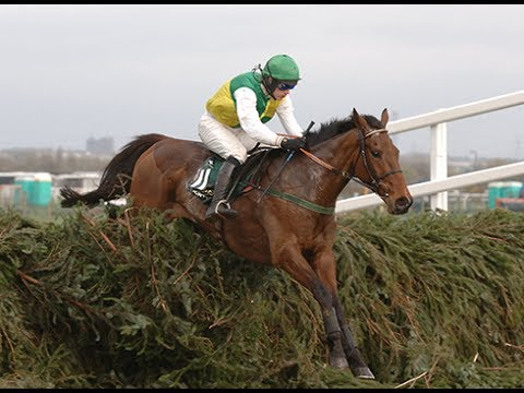 The BBC Grand National 2005 - Hedgehunter