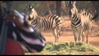 Soweto Sting Quartet - Sithi Hallelujah mp3