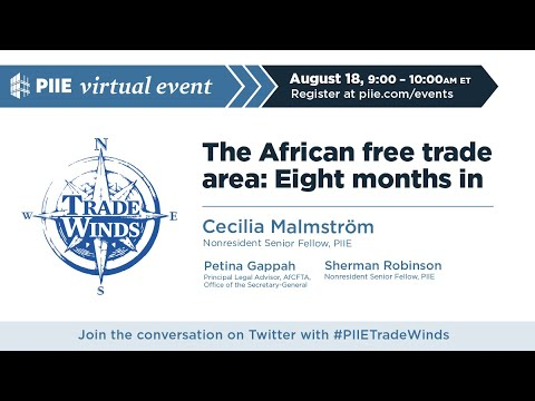 The African free trade area: 8 months in