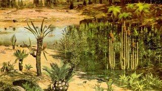 Влияние экологических факторов на организмы. Урок биологии.