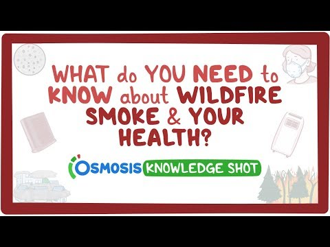 What do you need to know about wildfire smoke and your health?