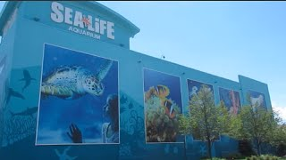 Sea Life Aquarium - Great Lakes Crossing Michigan