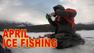 April Ice Fishing at the Spray Lakes Reservoir