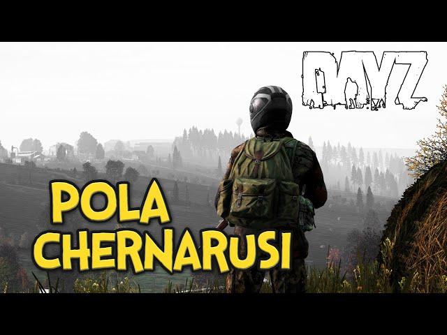 POLA CHERNARUSI - DAYZ | GAMEPLAY PL