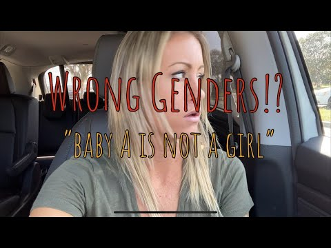 Surrogacy Update | Halfway To Twins