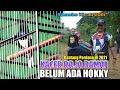Kacer Raja Damai Blm Ada Hokky Tampil Perdana Tahun  Di Event Kicau Sumeks  Palembang  Mp3 - Mp4 Download