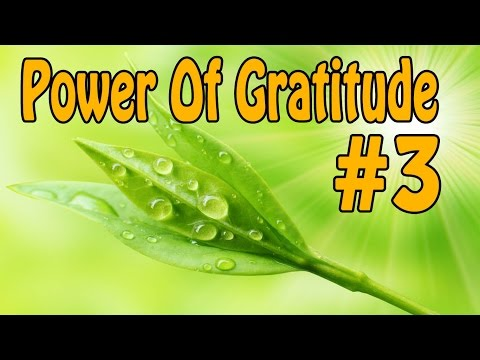 Gratitude Subliminal Meditation # 3 -  Enjoy What You Already Got | Iso Binaural