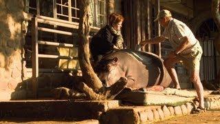 Een nijlpaard als huisdier! | Luxebeesten | VTM