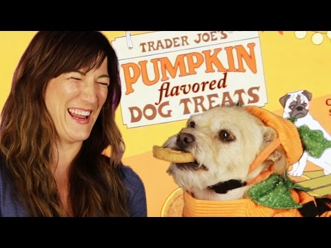 People Try Pumpkin-Flavored Dog Treats