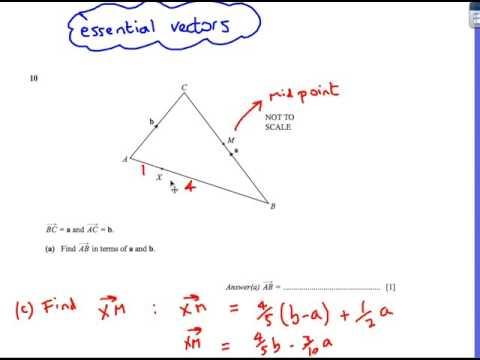 Vectors: IGCSE Maths Extended Cambridge Past Paper Questions