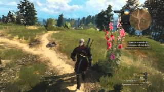 Dicas The Witcher 3