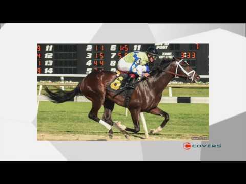 Veteran Vegas oddsmaker weighs in on the best Kentucky Derby bets: Live From Las Vegas