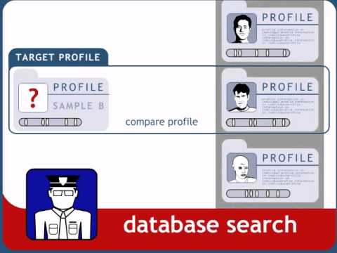 Forensic Genetic Database Overview