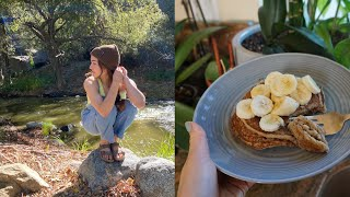 what i eat in a day (as a vegan): eating from our home garden
