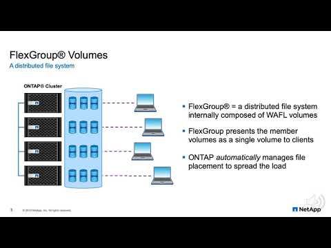 FlexGroup Volumes: A Distributed WAFL File System | USENIX