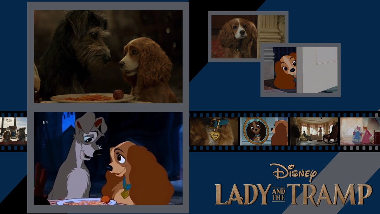 Lady And The Tramp Trailer 1955 Vs 2019 Comparision Live Action Remake Vs Animated Side By Side Youtube