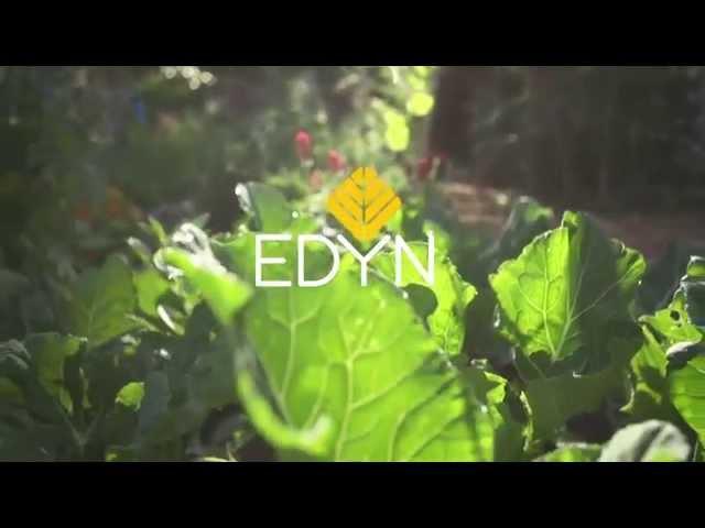 Edyn Garden Sensor 1