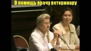 ***Лечение Домашних Животных*** ***Lechenie Domashnih Zhivotnyh***