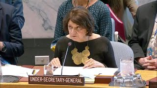 'Continuing absence' of political solution to Israel-Palestine conflict - Security Council Briefing