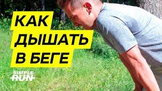 Как дышать 💨 в беге? 🏃🏻♂️ Устройство лёгких бегуна