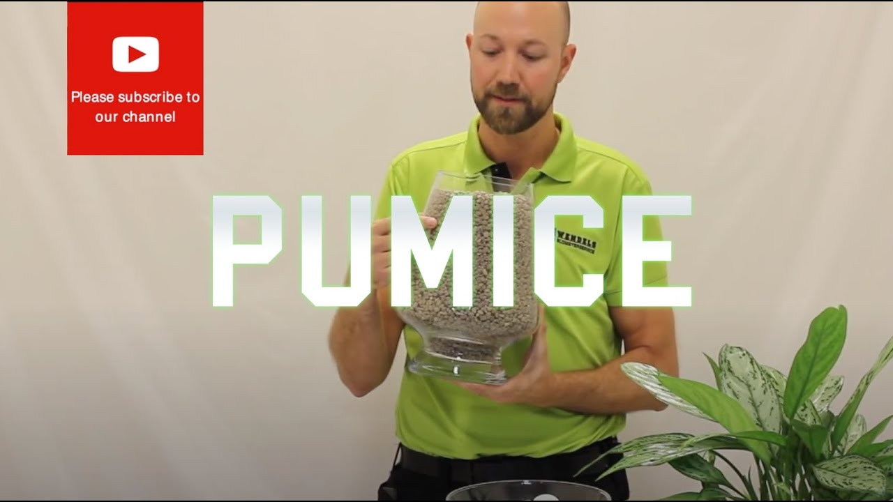 All You Need To Know About Pumice Volcanic Rock Youtube