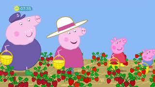Peppa Pig   S06E16   Strawberries