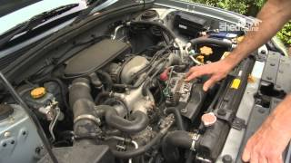 The Shed Online - Car Activity - Under The Hood