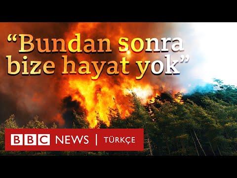 Marmaris'te yangın: Çam ağaçlarının çoğu yandı, arıcılık zor durumda