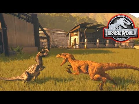 VELOCIRAPTOR vs DILOPHOSAURUS! - Jurassic World Evolution #9