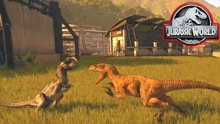 VELOCIRAPTOR Vs DILOPHOSAURUS! - Jurassic World Evolution #9