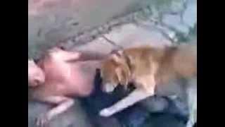 Собака насилует мужика в колхозе